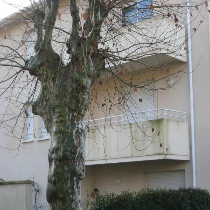 Offres de vente Appartement Belin-Béliet (33830)